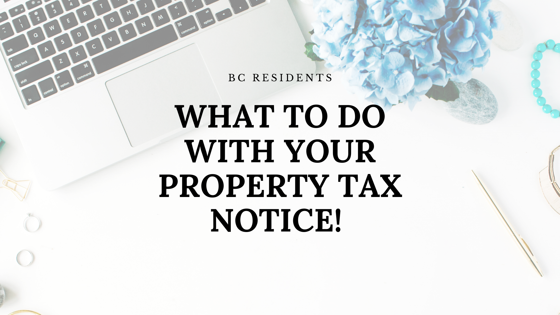 What do I do with my Property Taxes this year?
